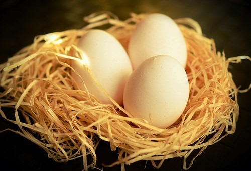 鳩 卵 味